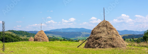 Canvas Print haystack on the grassy field in summer