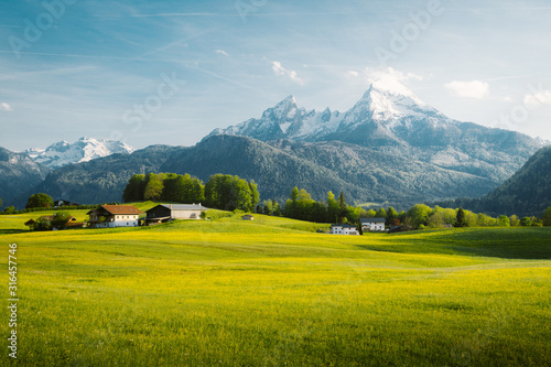 Foto Idyllic landscape in the Alps with blooming meadows in springtime