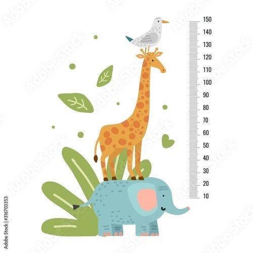 Wallpaper Mural Height measure