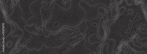 Photo Background of the topographic map