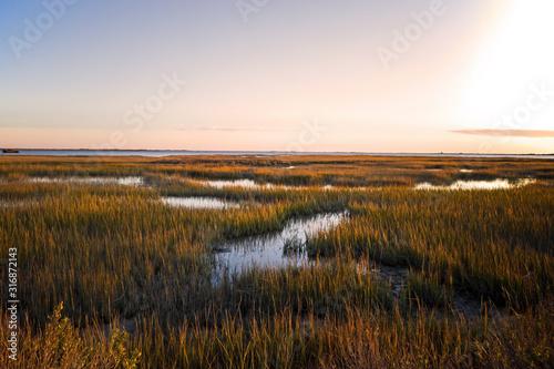 Photo Saltmarsh on the Virginia coast in USA in the golden sun at sunset
