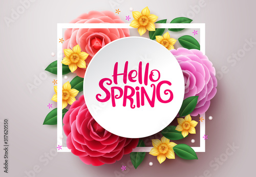 Spring flower vector background. Hello spring text in white frame space and colorful camellia and crocus flowers in white background. Vector illustration.