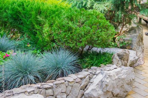 Obraz na płótnie Beautiful flowerbed in a park in a sunny days