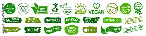 Organicznie naturalne życiorys etykietki ustawiają ikonę, zdrowej żywności odznaki, świeżego eco jarski jedzenie - akcyjny wektor