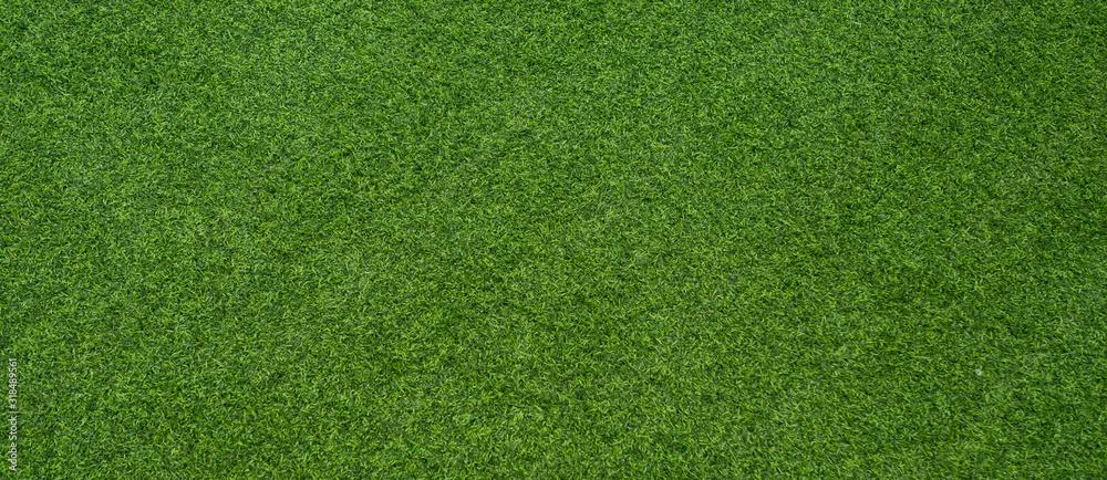 zielona trawa tło, boisko do piłki nożnej <span>plik: #318489561   autor: waranyu</span>