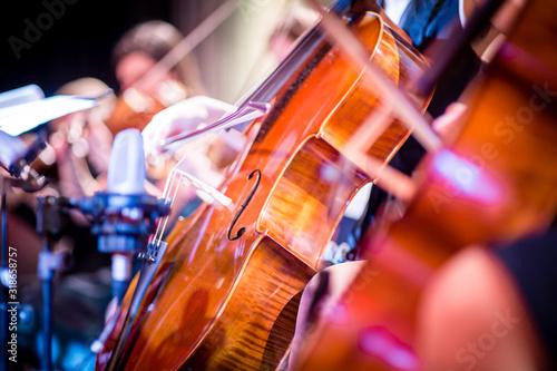 Canvas Print Close-Up Of Violin