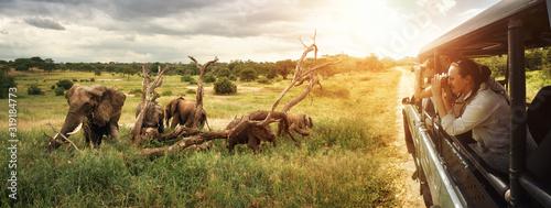 Grupa młodych ludzi ogląda i fotografuje dzikie słonie podczas safari po parku narodowym. Wyspa Sri Lanka.