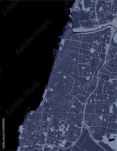 Obraz na plátně map of the city of Tel Aviv, Yafo,Jaffa, Israel