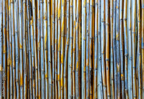 Fotografía Full Frame Shot Of Bamboos