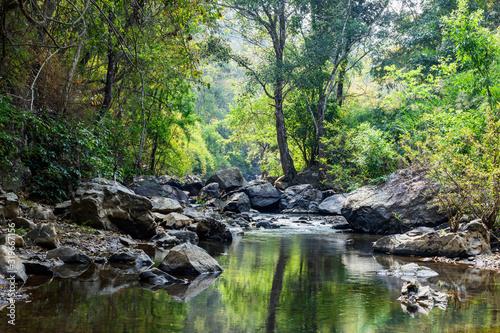 Fotografia rocks in creek or stream flowing water