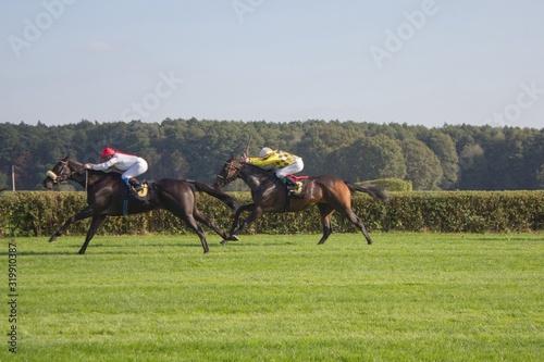Fotografiet Horse Race On Grassy Field Against Sky