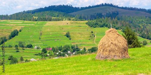 haystack on the grassy field in summer Fototapet