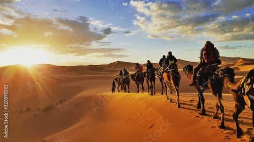 Canvas Print camel caravan in the desert Sahara Morrocco