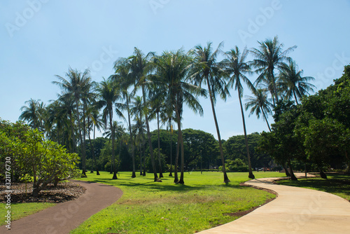 Pathway into a park or garden in a tropical setting Fototapete