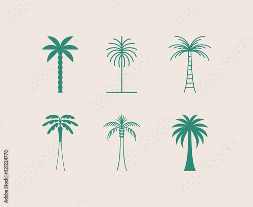 Obraz na płótnie Vector logo design template with palm tree - abstract summer and vacation badge
