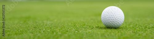 golf ball on green, banner Fototapet