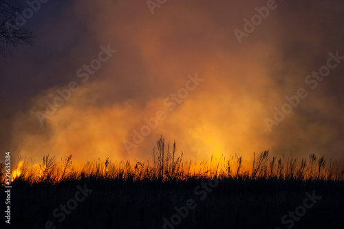 Dry grass burns at night Fototapet