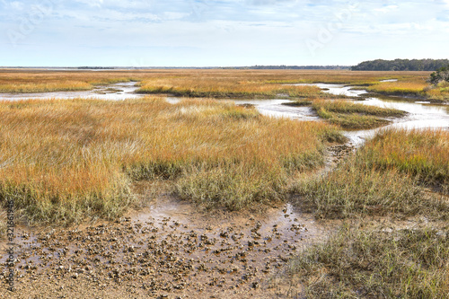 Canvas Print View of scenic salt marsh from Timacuan Preserve in Jacksonville, Florida