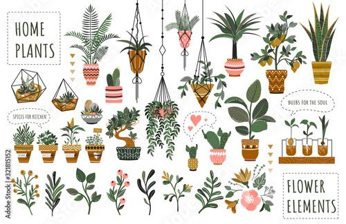 Wallpaper Mural Houseplants flowerpots isolated icons vector illustration