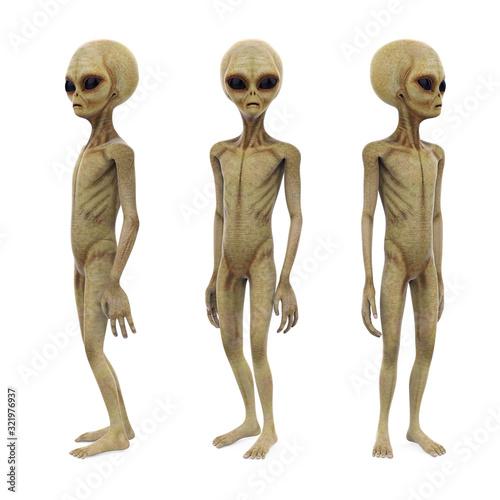 Leinwand Poster Alien Creature Isolated