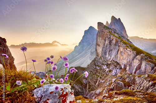 Fotografie, Obraz Amazing view on Seceda peak
