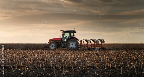 Fotografie, Obraz Tractor plowing fields in sunset