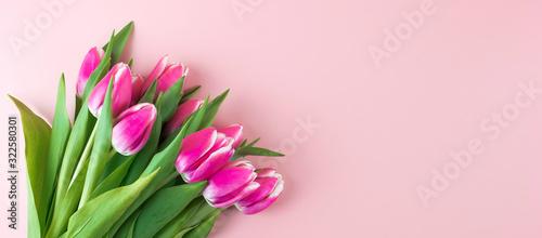 Fototapeta premium Różowy tulipan kwiat na niebieskim tle tabeli drewna z miejsca kopiowania tekstu. Miłość, Międzynarodowy dzień kobiet, dzień matki i koncepcja Happy Valentine day