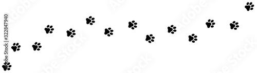 Paw print foot trail. Dog, cat paw print. Vector