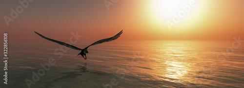 Fényképezés Eagle flying flush with water
