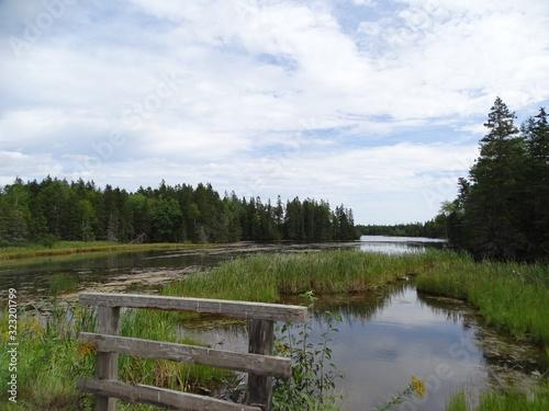 Photo North America, Canada, Province of Nova Scotia, Cape Breton Island, swamp, fores