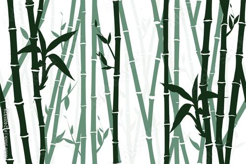 Fotografija Seamless bamboo background, pattern. Vector illustration