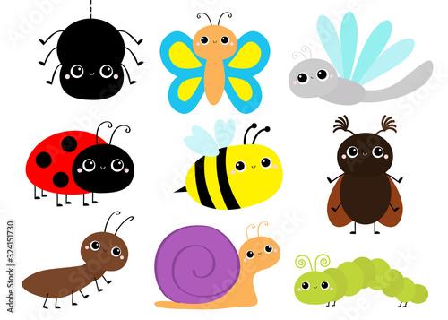 Obraz na plátne Insect set