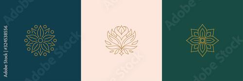Canvas-taulu Vector line minimal decoration design elements set - rose flower and botanical l