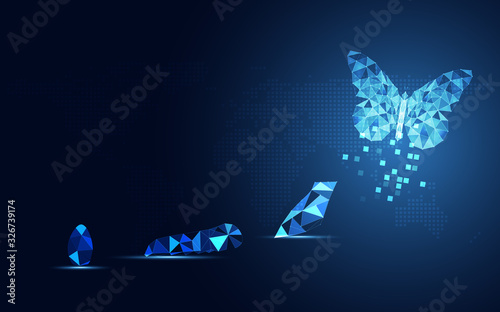 Fototapeta Abstract Business digital transformation innovative of butterfly life cycle evolution blue background