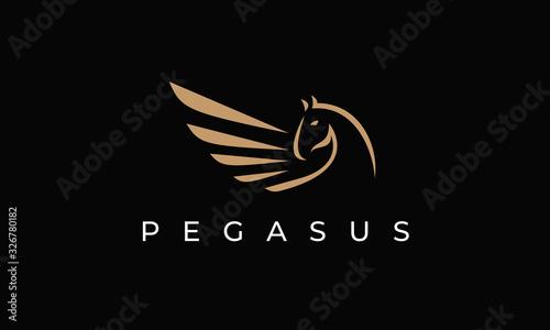 Stampa su Tela Pegasus Logo