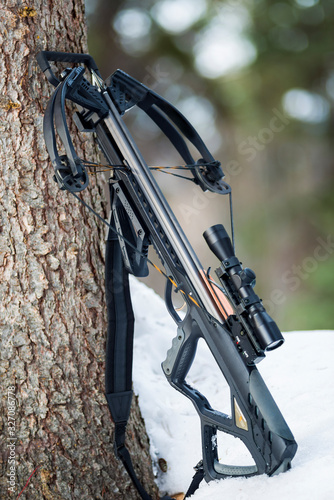 Fototapeta Compound Crossbow with Hunting Arrow against a Tree