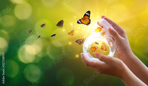 Fotografia The girl frees the butterfly from the jar, golden blue moment Concept of freedom