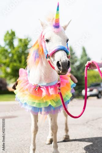 Photo Unicorn Birthday Party