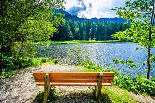 old bench Fototapeta