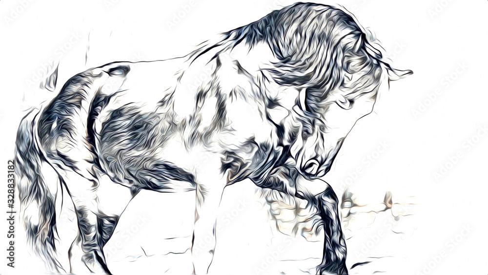 freehand horse head pencil drawing <span>plik: #328833182 | autor: maxtor777</span>