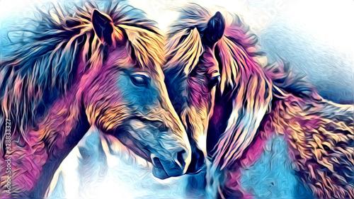 Fotografia freehand horse head pencil drawing