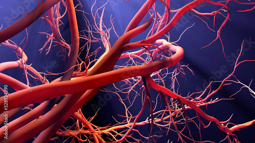 Photo New blood vessel formation