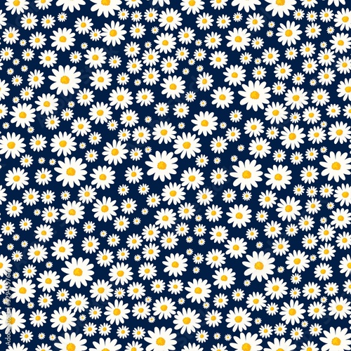 Fotografija Daisy seamless pattern