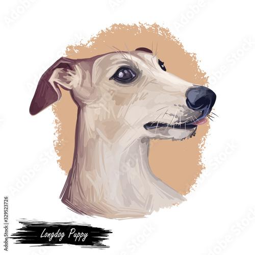 Valokuvatapetti Longdog Puppy digital art illustration isolated on white