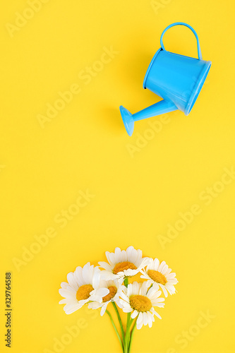 Photo Watering bouquet chamomiles from small blue watering can on yellow background