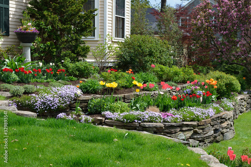 Valokuvatapetti Hilliside landscaping with natural stones, tulips and flox