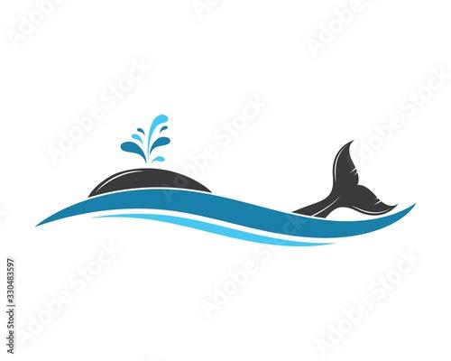whale tail icon vector illustration design Fototapeta