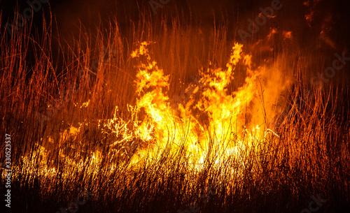 Photo field firestorm at night