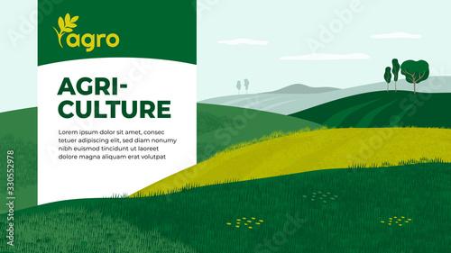 Fotografía Vector illustration of landscape with agricultural fields