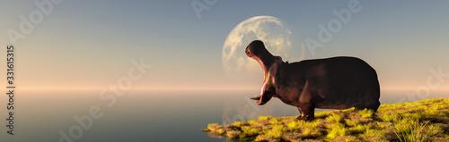 Stampa su Tela hippopotamus in the wild